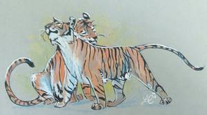 Tiger's hug by leana-lapointe