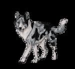 Rivendell's Howl at First Light