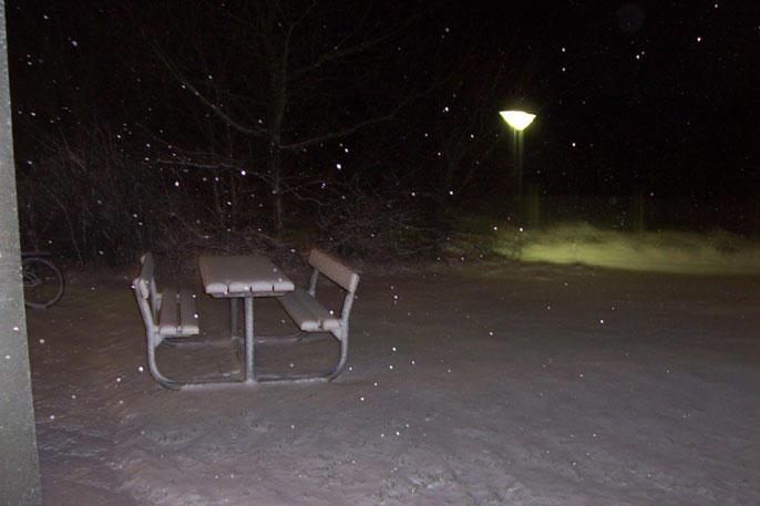 Night Snow by danzka