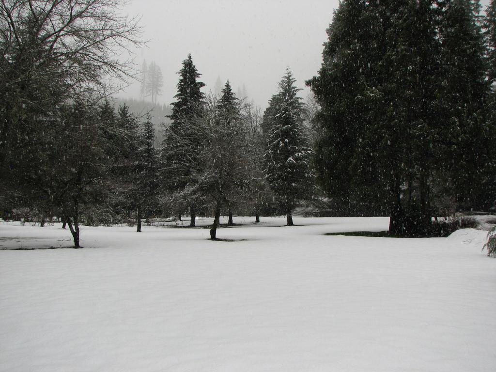 Snow Stock by Moonchilde-Stock