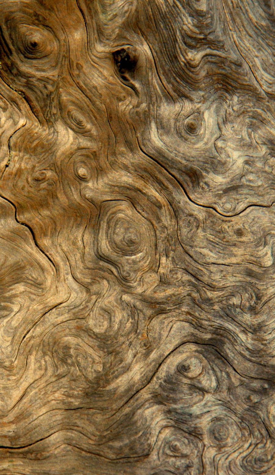 Wood Stock 1