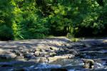 River Stock 2