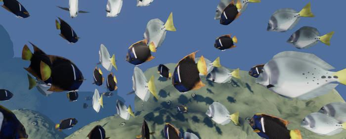 Plein Air Challenge: Fishes