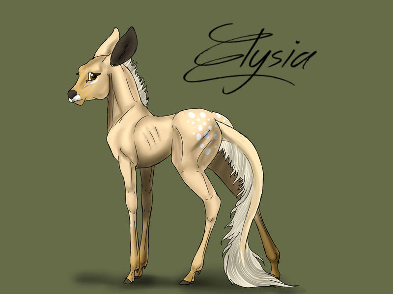 Elysia   Filly fawn   Herdmember by MelonHeadGirl
