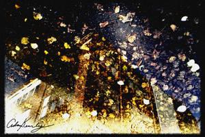 Autumn Reflection by singularitycomplex