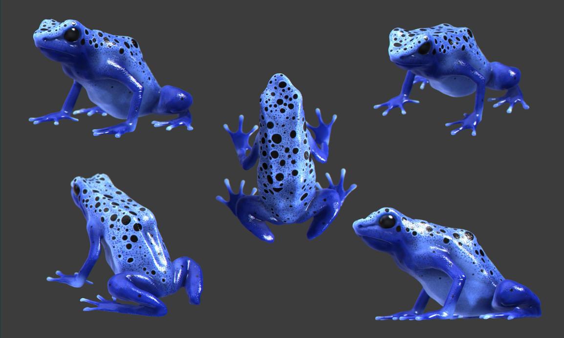 Blue Poison Dart frog by darkus-markus on DeviantArt