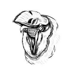 The Owls Inner Grin