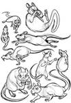 Rat Character Sketches