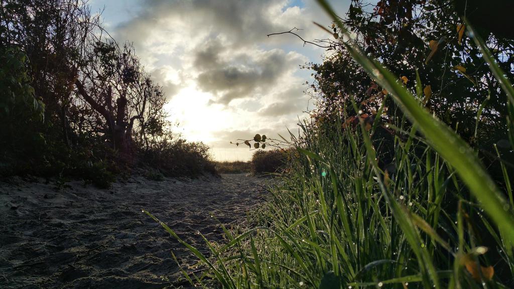Folly Beach Trail - Sunrise by EdwinLMunt
