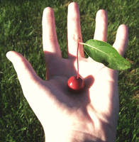 Little Cherry by kripes