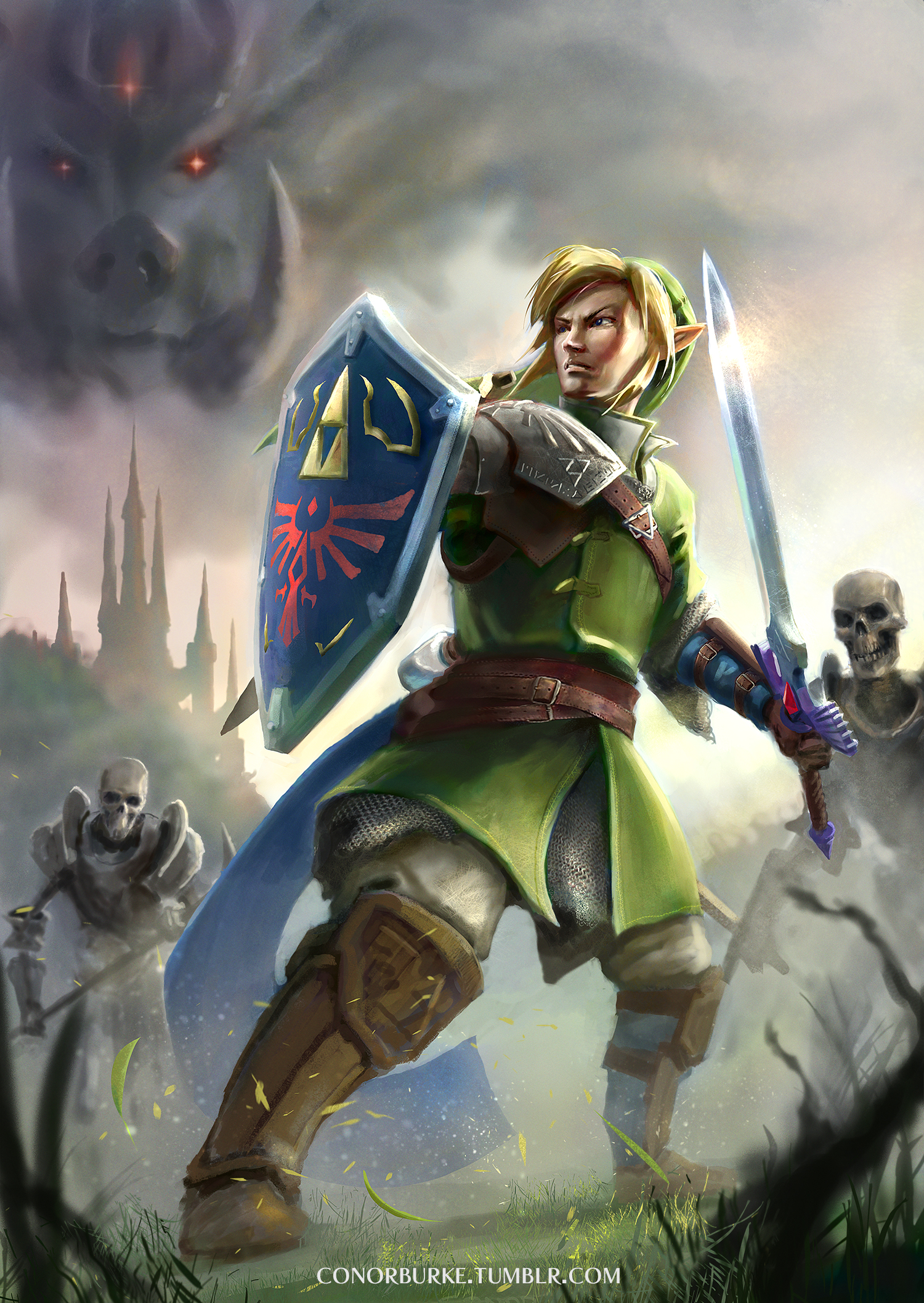 Legend of Zelda by conorburkeart