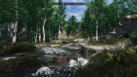 Skyrim SE with Custom ENB Settings 6