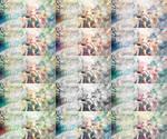 If I were a bird [tagwall] by TenshiMarii