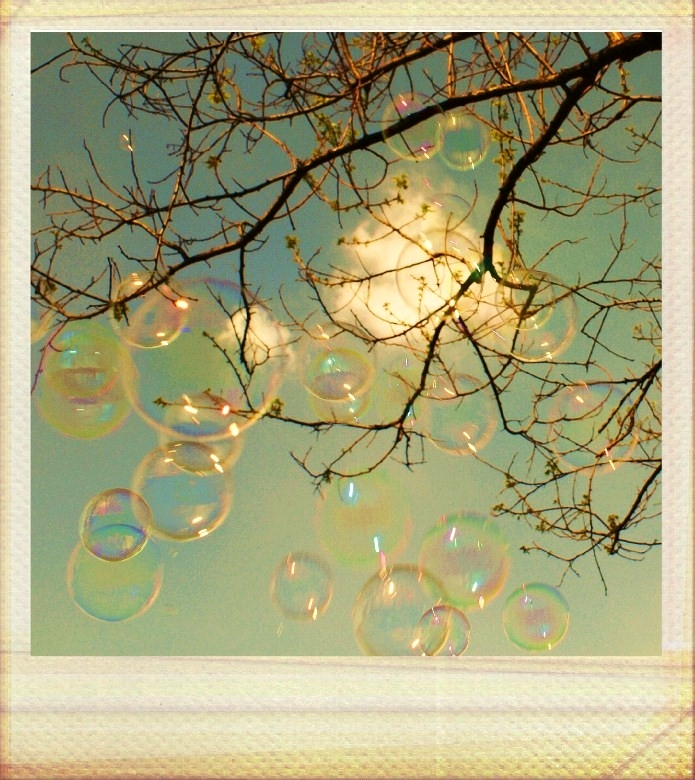 Polaroid soap bubbles by wonderlandadventures