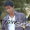 Team Seth by ana-mcgoldens