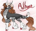 (EVENT):Adhara