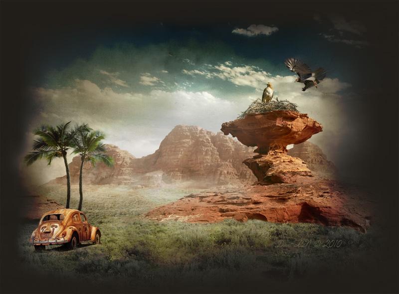 Desert Anomalies I