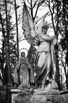Lychakiv Cemetery