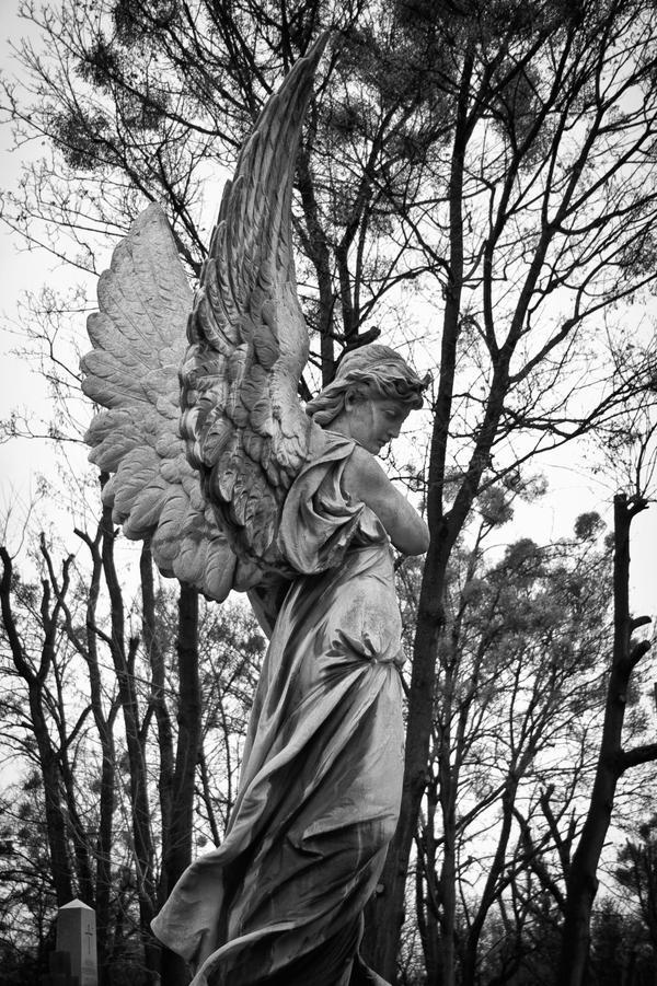 Lychakiv Cemetery 2