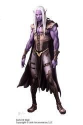 Tales of Arcana - Male Dark Elf by MiguelRegodon