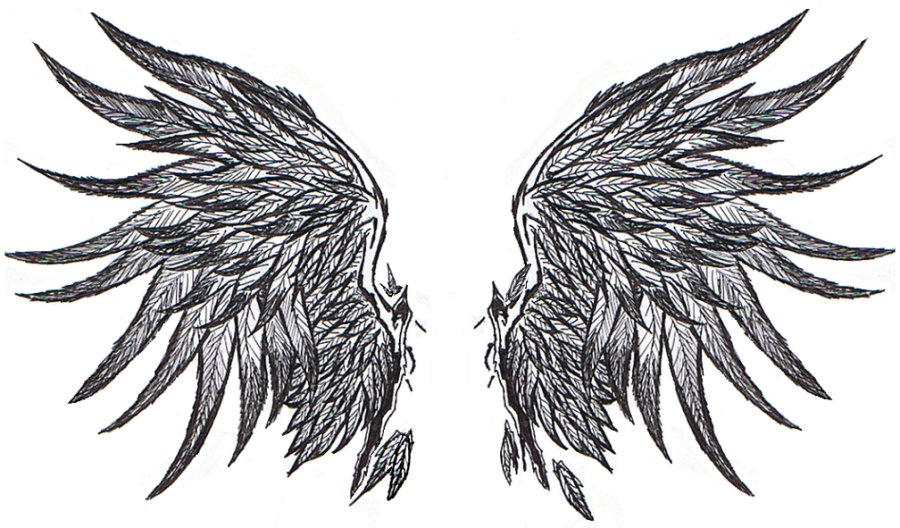 Fallen Angel Wings Drawing AngelWings III by StaridragonFallen Angels Wings