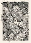 Daughter of owls