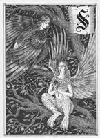Sirin and Alkonost by CoalRye