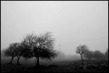 2860 by Brazilero2002