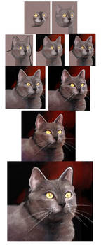 Cat Process