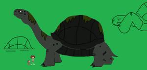 Amphibia Bestiary Tortoise