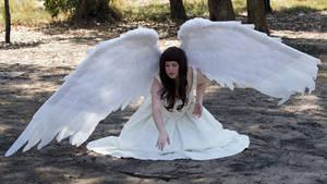 Angel 18 by kirilee