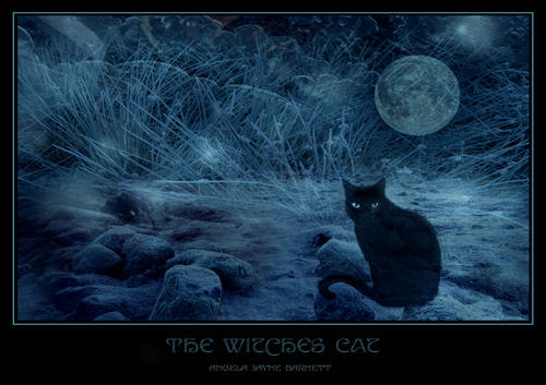 The Witches Cat by ArwensGrace