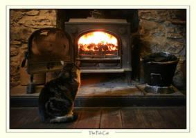 Ye Olde Pub cat
