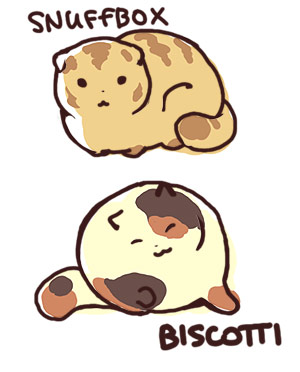 Snuffbox and Biscotti by joodlez