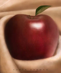 apple by sofiafarhan