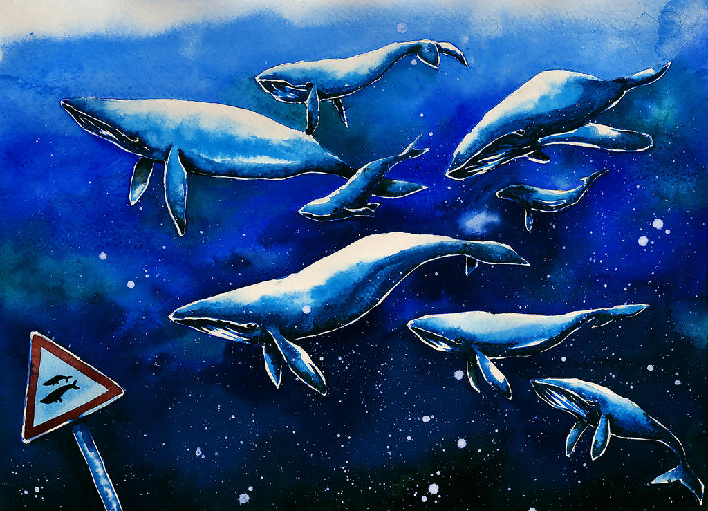 Whales by katy-ska