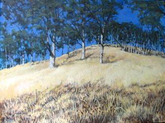 Oak Savannah by Caddisman