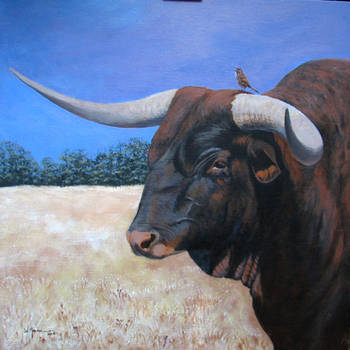 Bull and Sparrow by Caddisman