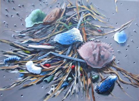 Beauty and the Beach by Caddisman