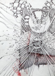 Insomnia or anatomy of moths by NIESAMOWITY