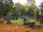 Wien Zentralfriedhof Autumn 2016