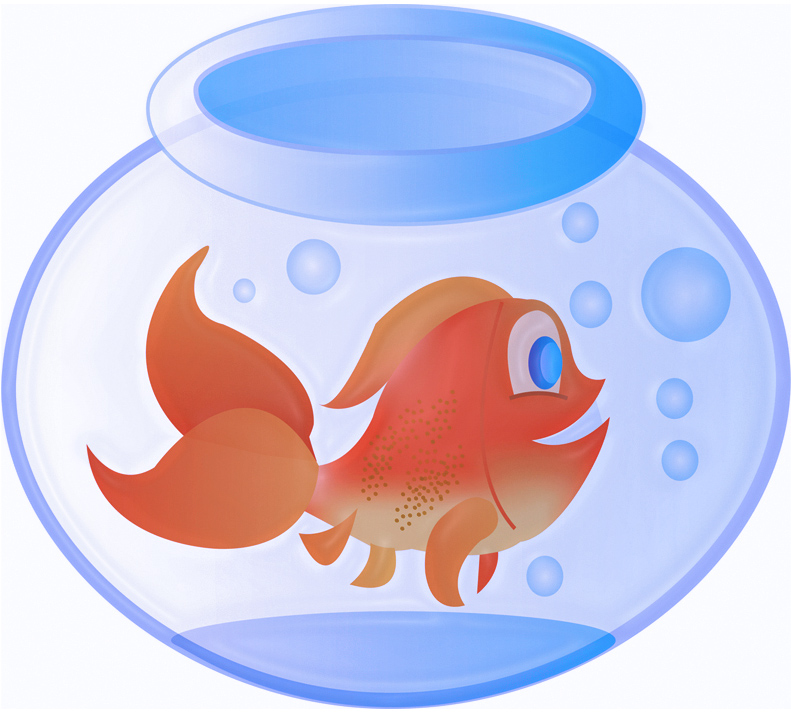 Cartoon Goldfish Pictures