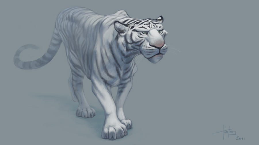 The Art Of Character Design With David Colman Volume I : White tiger by mrtomlong on deviantart