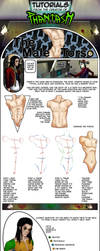Male Torso Tutorial via Phantasm Comic by PhantasmComic