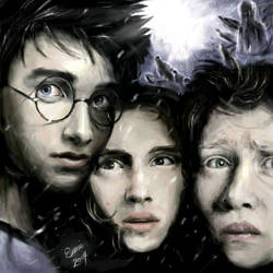 Harry Potter Trio by latinart