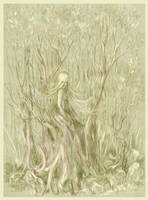 The Forest by MamonnA