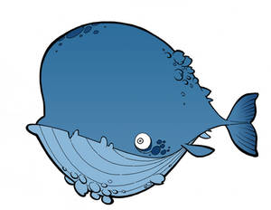 Silly Whale