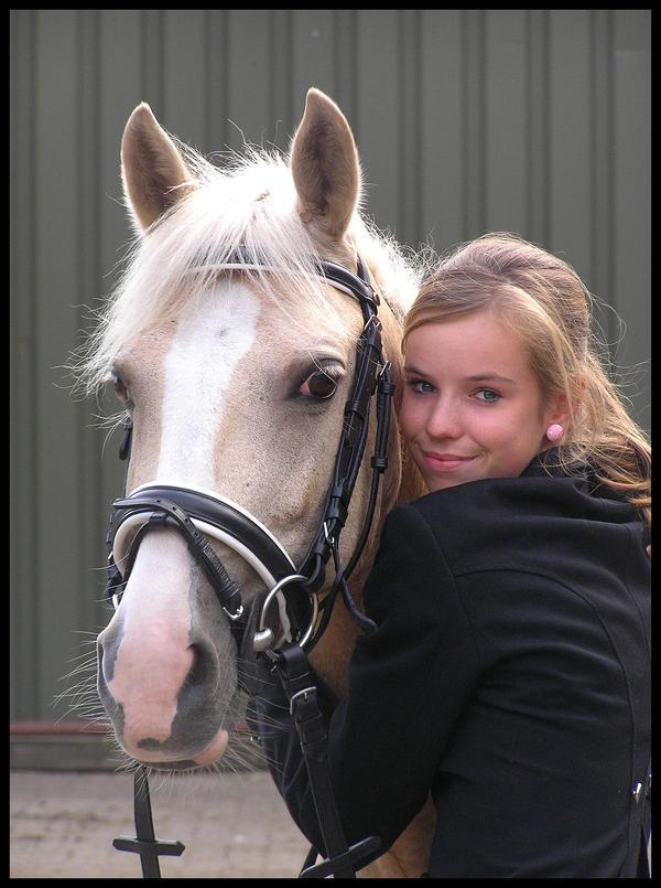 Danielle Horse III by Jenvanw