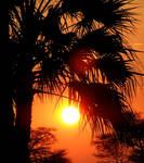 Sunset Namibia II