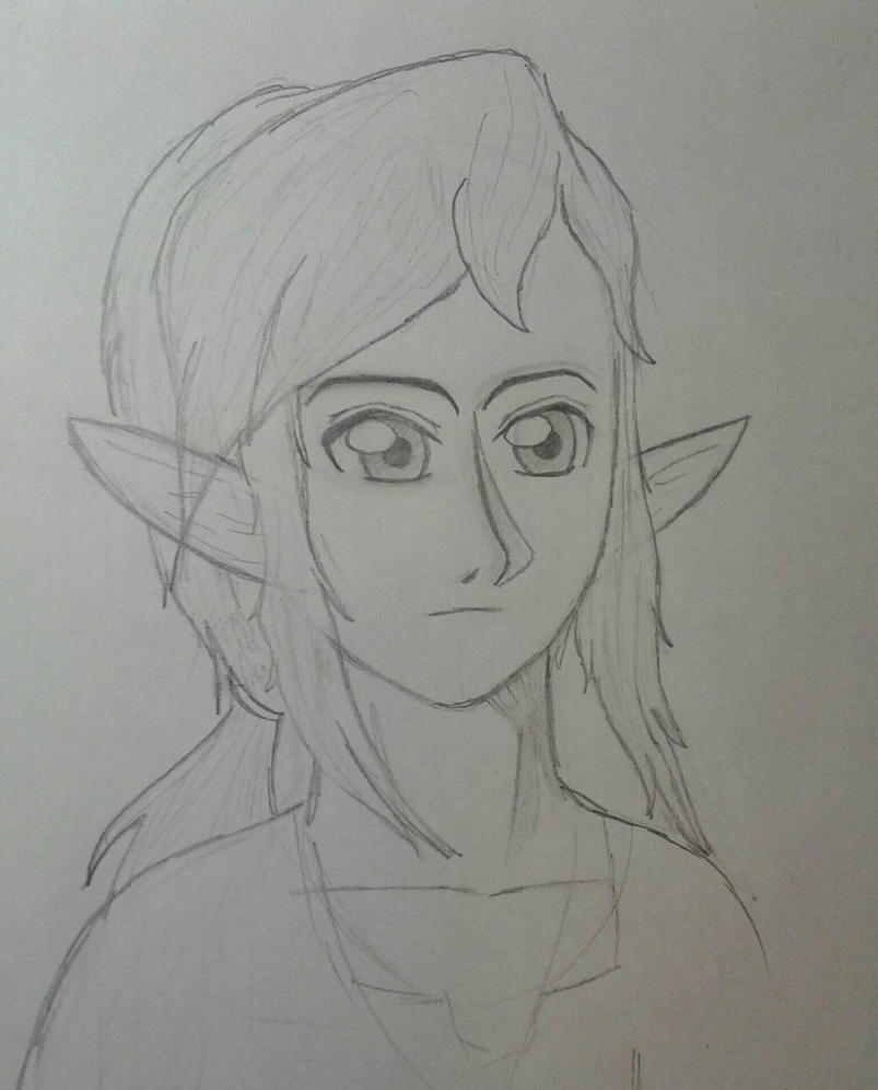 BotW Link (Wip) by Allora2500